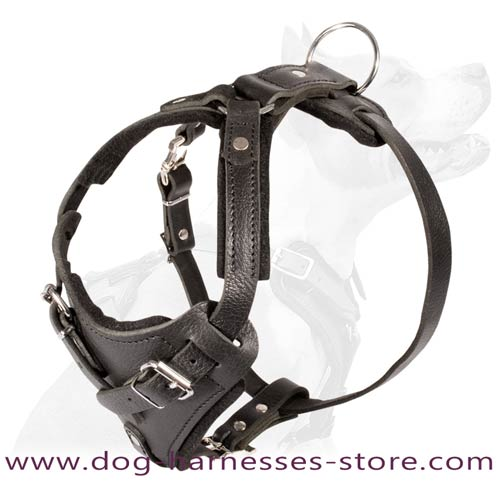 Agitation Training Leather Dog Harness Padded With Thick  Felt
