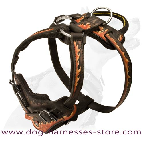 Riveted Painted Leather Dog Harness With Comfortable  Handle