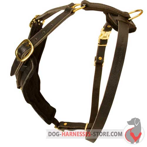 Leather Dog Harness for Long Training Sessions