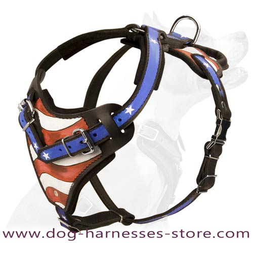 Hanrpainted American Pride Leather Dog Harness