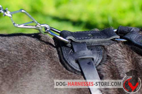Classic Leather Dog Harness Ring on Back Plate