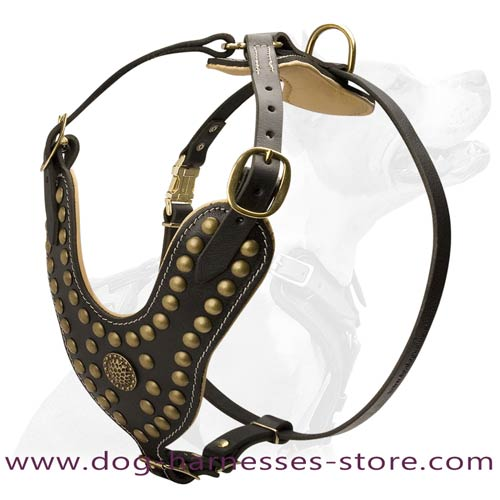Studded Leather Dog Harness With Soft Nappa Padding  Inside