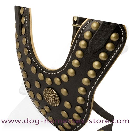 Y-Shape Leather Dog Harness Decorated With Studs
