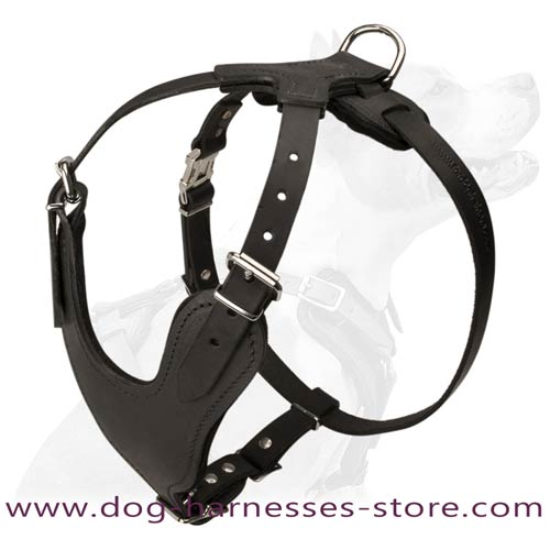 Perfect Attack And Agitation Training Leather Dog  Harness