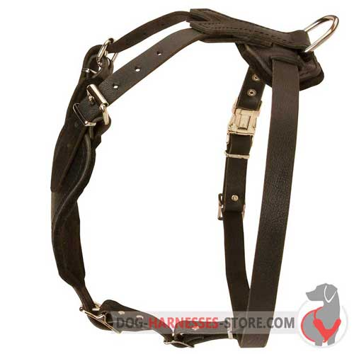 Comfortable Y-Shape Design Leather Dog Harness
