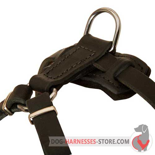 Leather Puppy Harness Back Plate with Stitched D-Ring