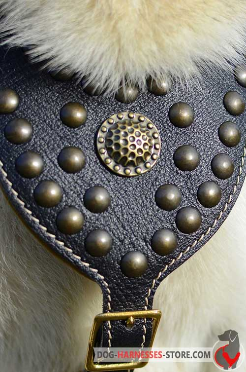 Padded chest plate adorned with brass studs and medallion
