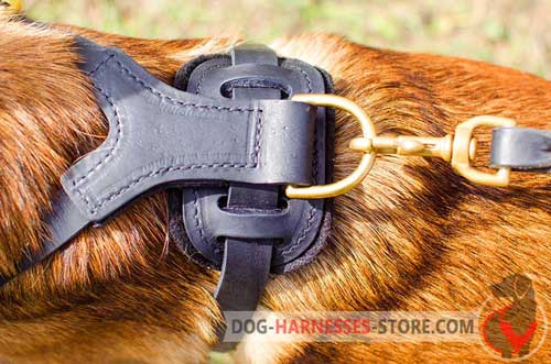 Leather dog harness with rust-proof hardware