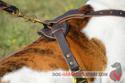 Extra strong leather dog harness with D-ring
