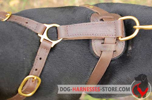 Leather dog harness with brass hardware