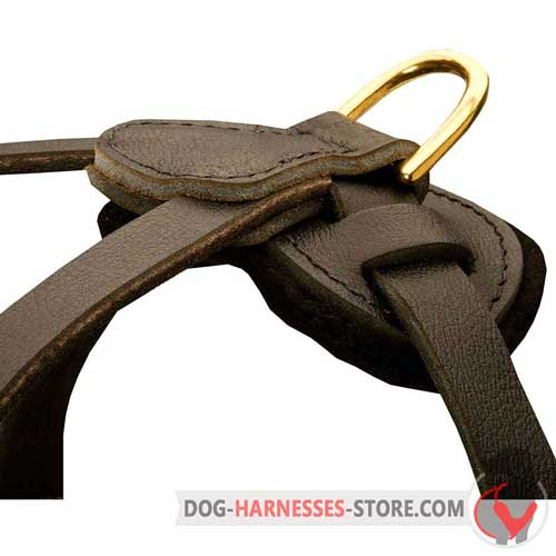 Multifunctional leather dog harness with D-rings