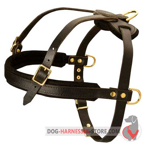 Padded pulling leather dog harness