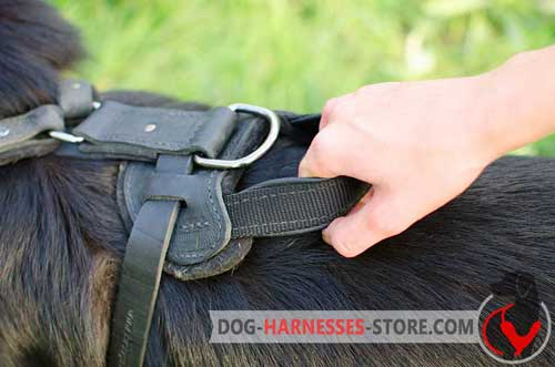 Strong Leather Handle for Better Control Over Your Dog