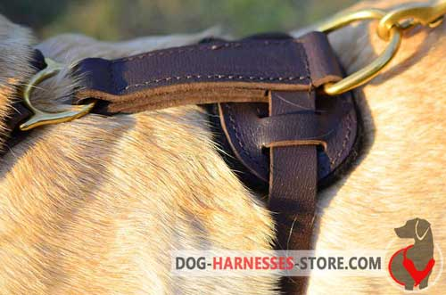 Agitation training leather dog harness