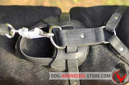 Rust-resistant leather dog harness