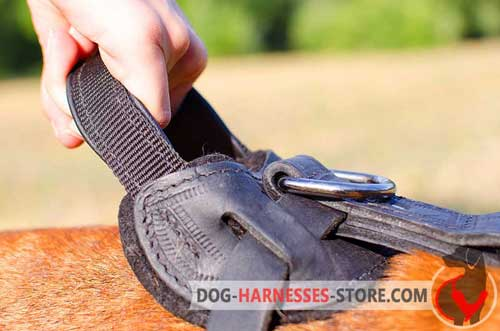 Strong Leather And Nylon Handle for Better Control over Your Dog