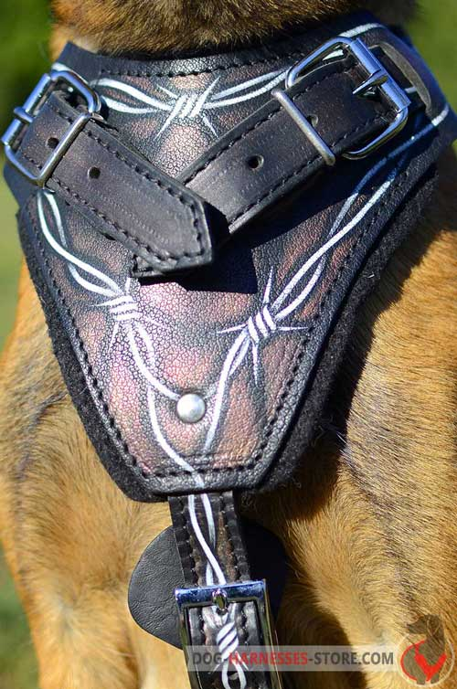 Padded on Chest Leather Dog Harness