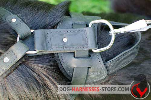 Riveted Leather Dog Harness with Nickel D-Ring