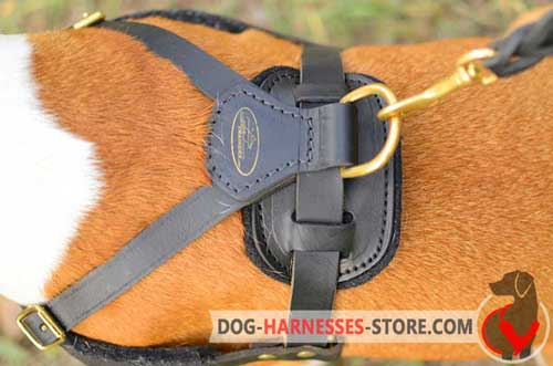 Leather dog harness with stainless ring and snap hook