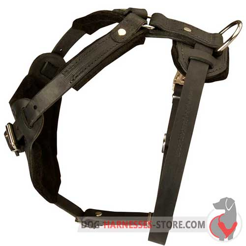 Riveted Leather Dog Harness With Comfortable Handle