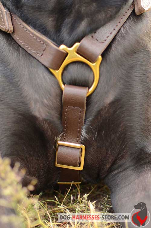 Leather dog harness without chest plate