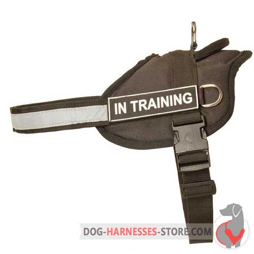 Light-weight nylon dog harness for comfy wearing