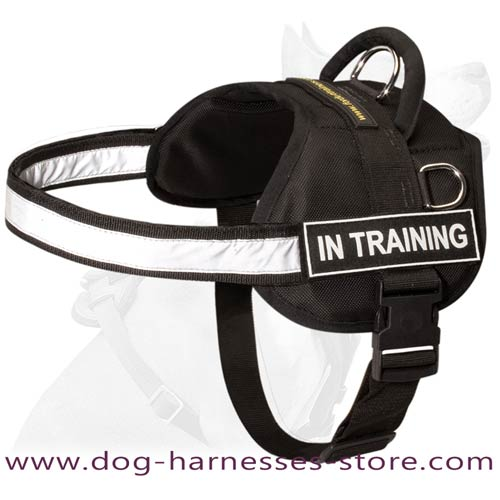 Strong Nylon Dog Harness With Reflective Strap