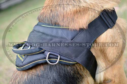 All Weather Nylon Dog Harness With Comfortable Handle