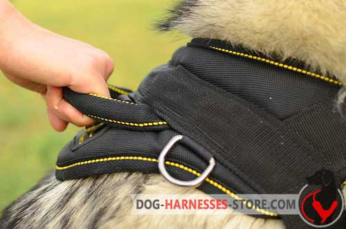 Nylon Dog Harness with Comfortable Strong Stitched Handle