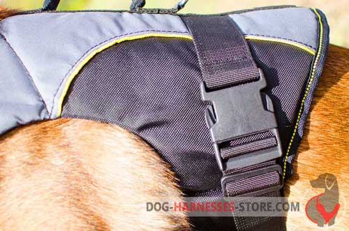 Rehabilitation dog harness made of adjustable nylon