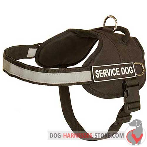 Reliable dog harness with reflective strap for night activities
