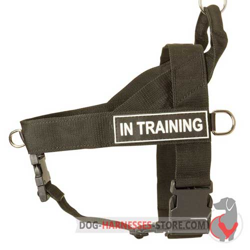 Nylon Dog Harness With Additional Under Belly Strap