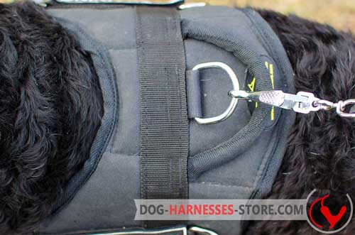 Nylon dog harness equipped with nickel plated hardware