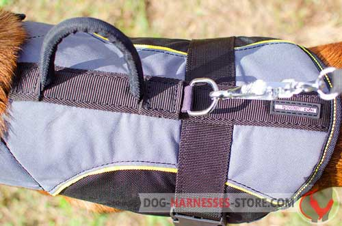 Nylon dog harness equipped with nickel D-ring for the leash