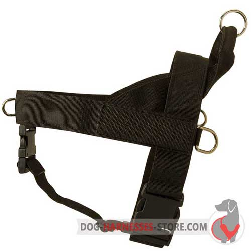 Strong nylon dog harness for off leash training