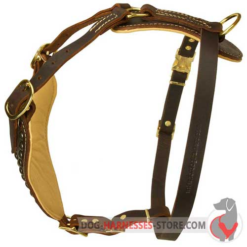 Comfy leather dog harness with padded plate