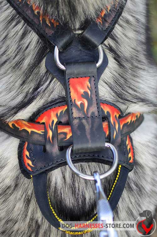 Painted Dog Harness with Strong Massive Nickel Covered Rings