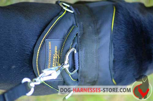 Pulling dog harness with extra D-ring for attaching a leash