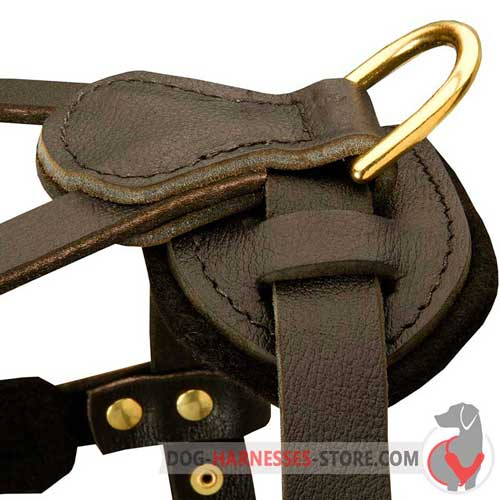 Strong leather dog harness equipped with D-ring for leash
