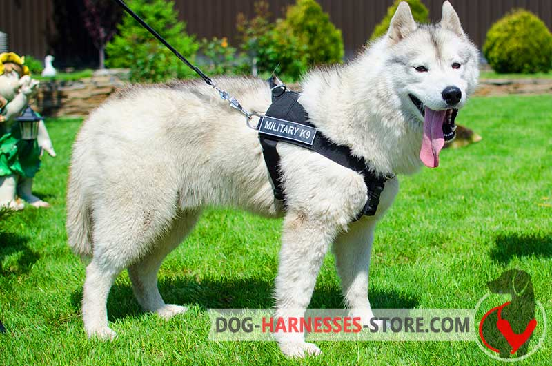 Multifunctional Nylon Siberian Husky Harness With Id
