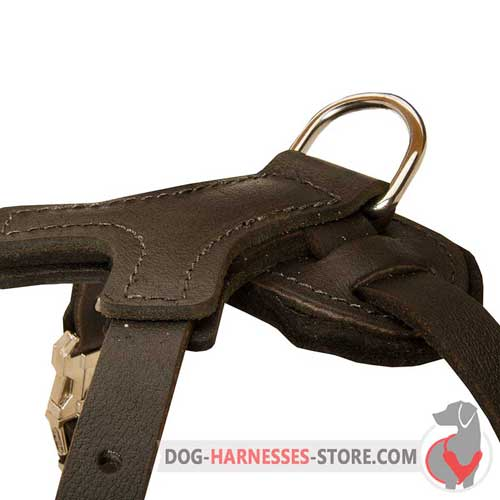 Leather dog harness with strong D-ring