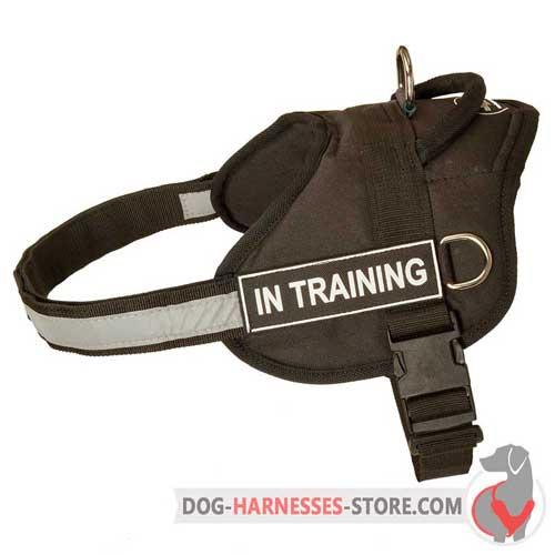 Working nylon dog harness with sturdy rings