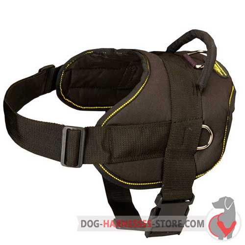 Reliable nylon dog harness with strong rings for pulling