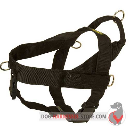 Secure nylon dog harness for walking sport