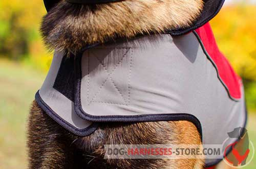 Comfy dog coat equipped with stand-up collar