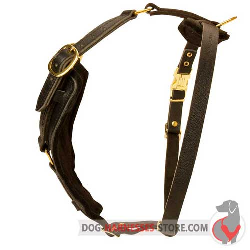 Y-Shape Leather Dog Harness with Quick Release Buckle