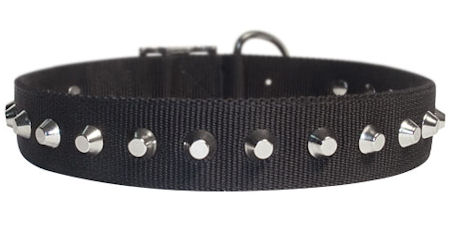 "1 Row Studs Dog Collar-1 1/4"" for every day walking dogs"