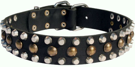 Custom Studded Leather Dog Collar for every day working dogs