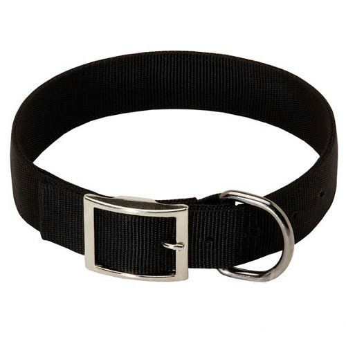 Strong Nylon Dog Collar 2 Ply with Buckle and Ring
