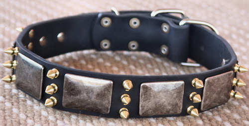 Leather Spikes Dog Collar - massive plates+ brass 3 spikes